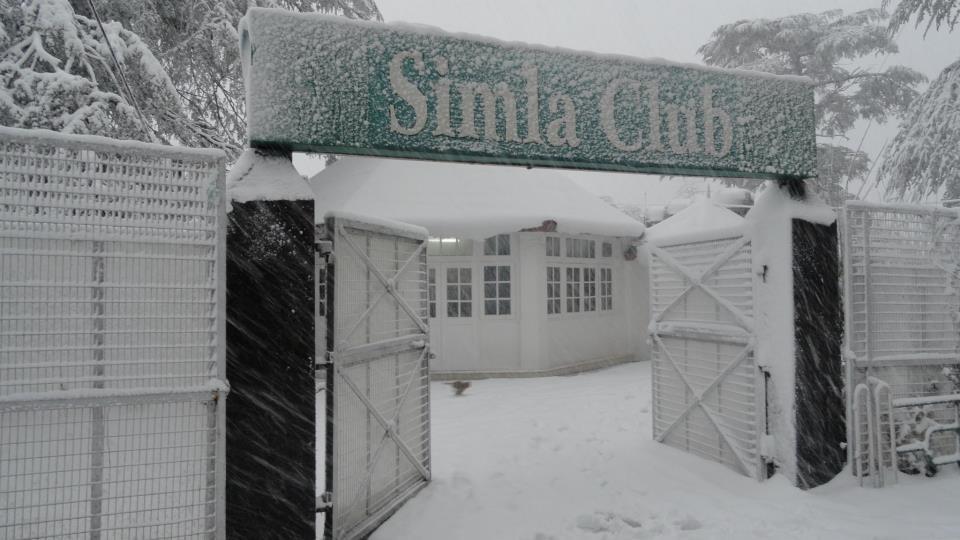 shimla-club
