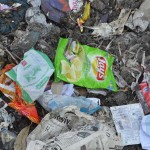 chicps-pack-waste-in-himachal