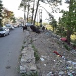 shimla highway roadside waste