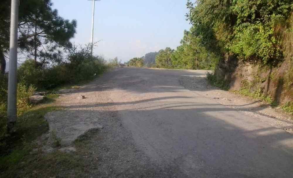 Galog -Dhami Road (2)