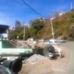 Shimla Tutu