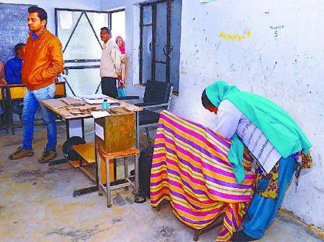 panchayat-shimla-568bcf9987810_exlst