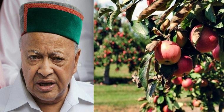 cbi raid on virbhadra apple orchard