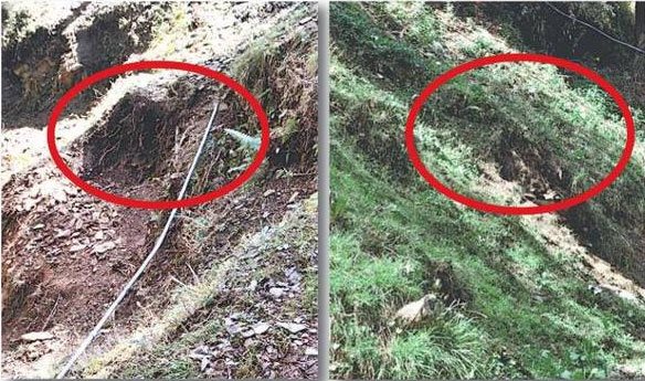 gorkhu-lodge-kasumpti-shimla-forest-department