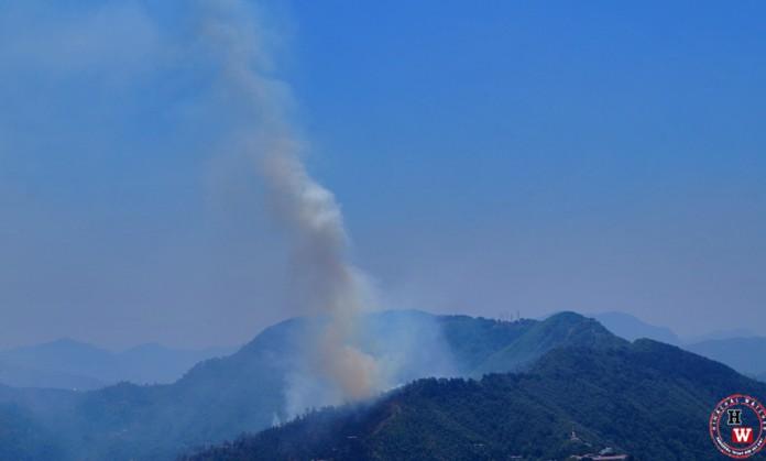 Shimla FOrest fire