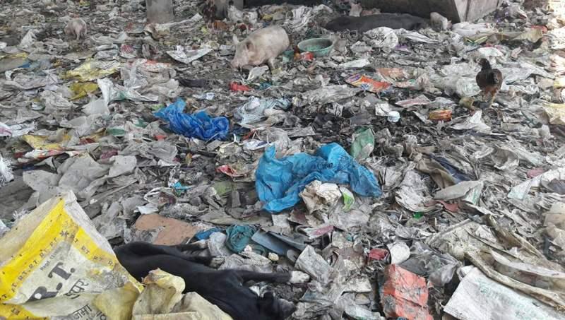 Sundarnagar garbage