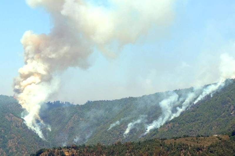 shimla forest fire