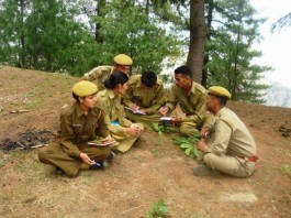 HP Forest gaurd HP Forest gaurd recruitment 20162016