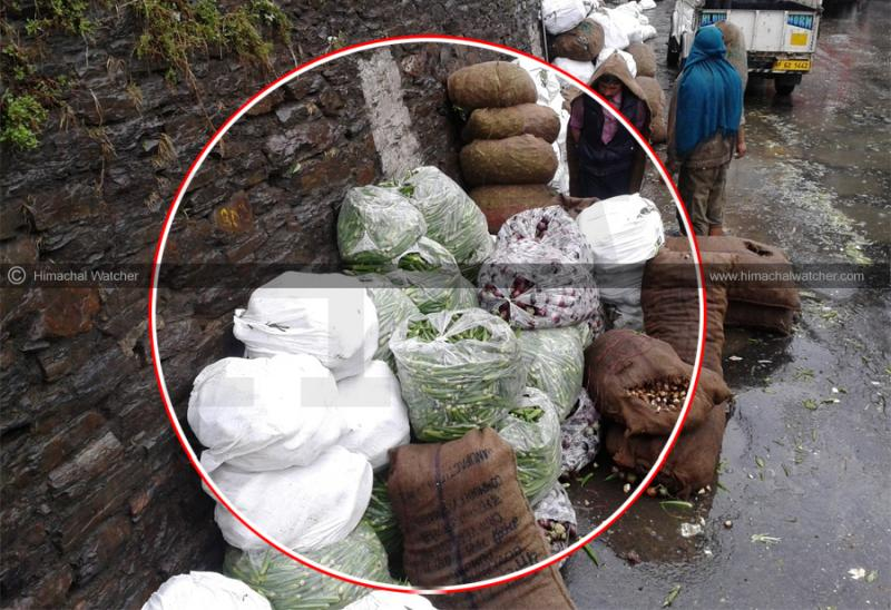 polythene-banned-in-himacha