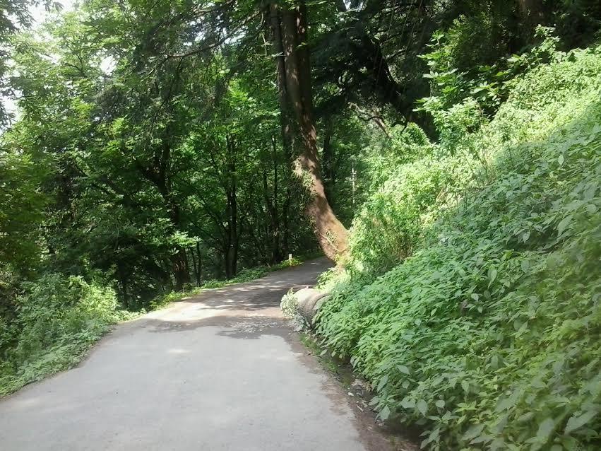 ava-lodge-summerhill
