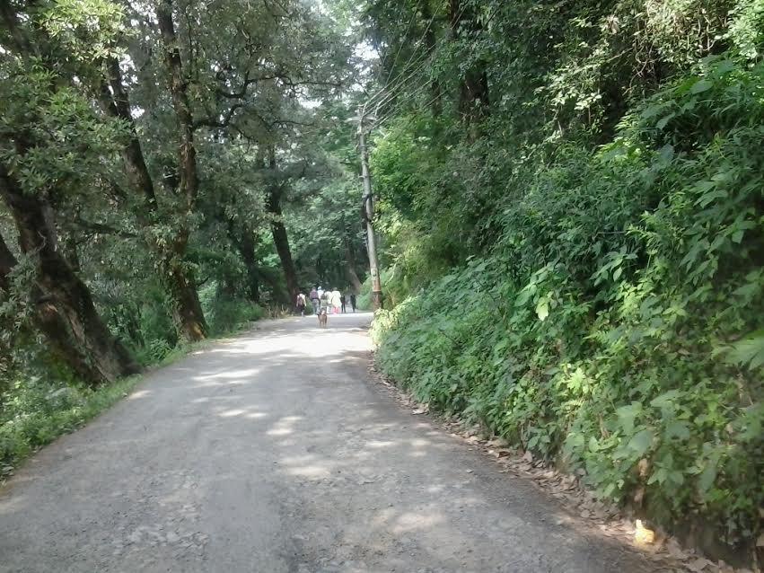 bba-college-road-summerhill-hpu
