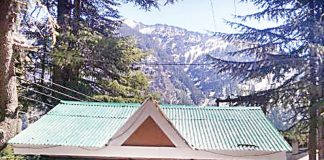 illegal-encroachment-in-kullu-forest