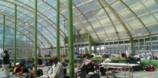 Shimla-IGMC-Green-House