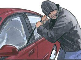 mandi-car-thief