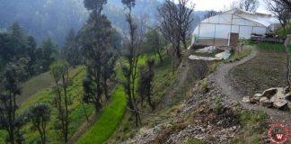 solar-fencing-in-himachal