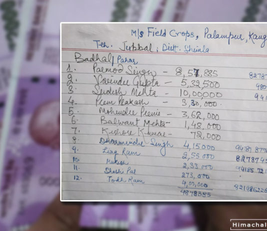 Apple Growers of Shimla Not Paid Due Payments
