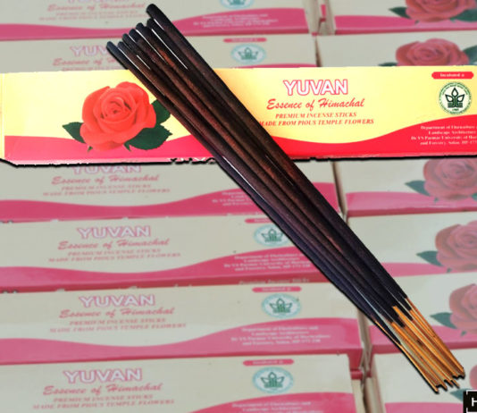 Organic incense from flowers by Himachal start-up