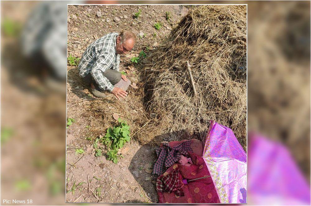 sirmaur newborn girl child thrown in fields
